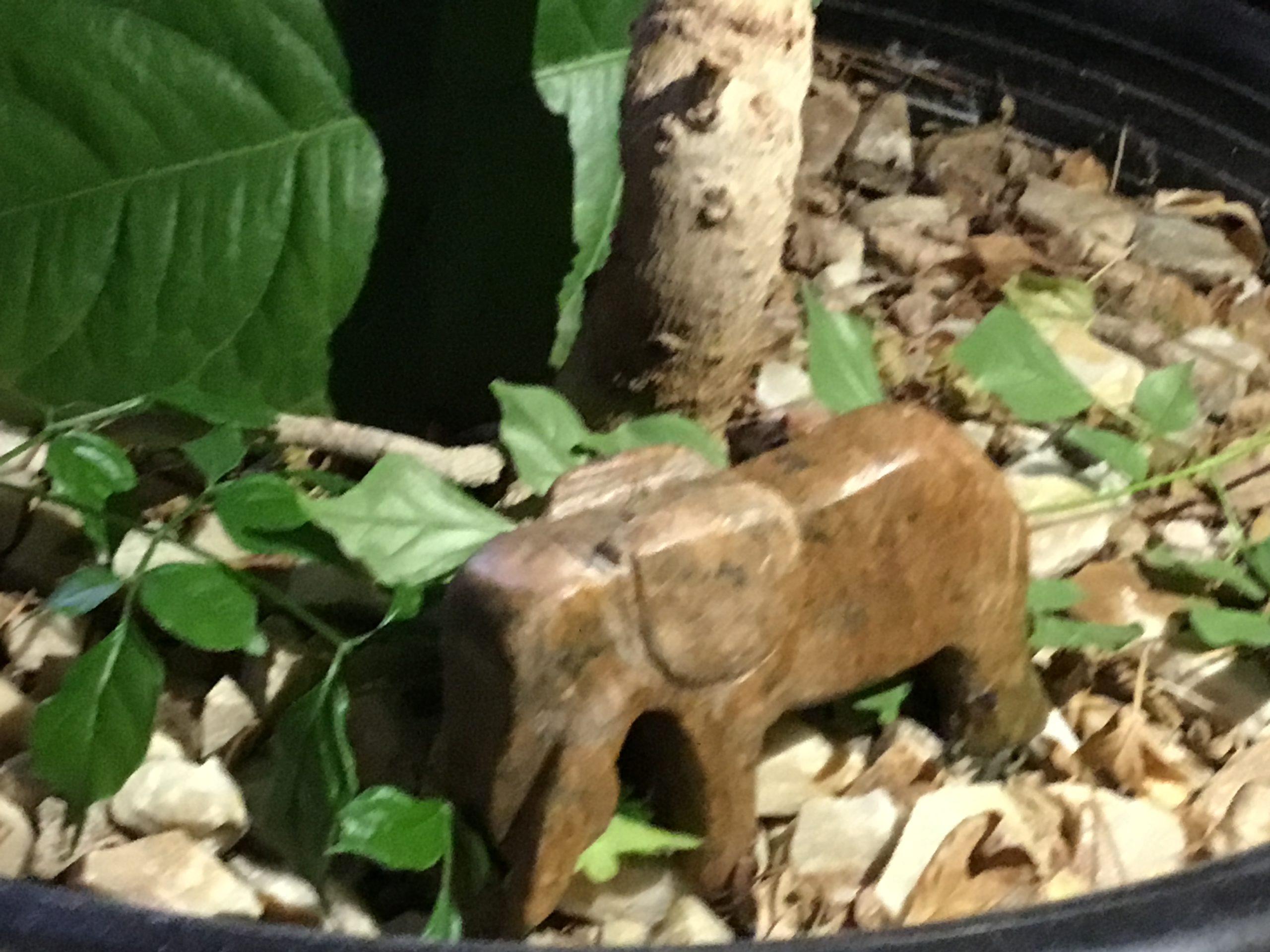 Sculpture d'un éléphant dans un pot de fleur