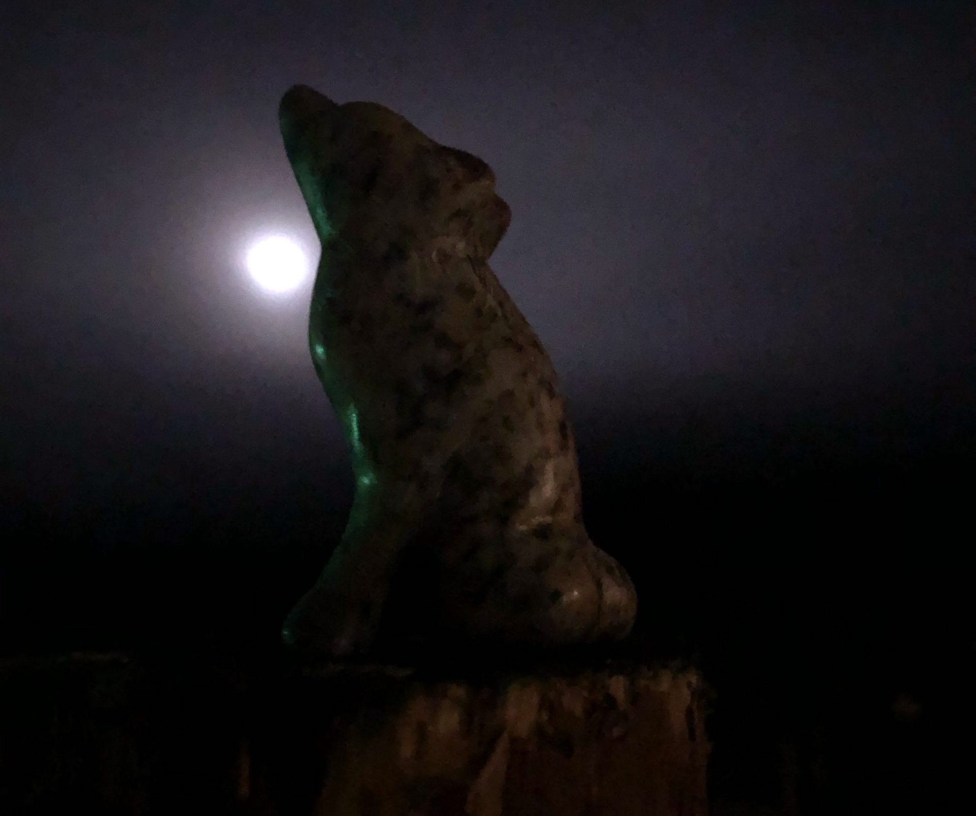 Sculpture d'un loup en pierre à savon dans la nuit avec la lune
